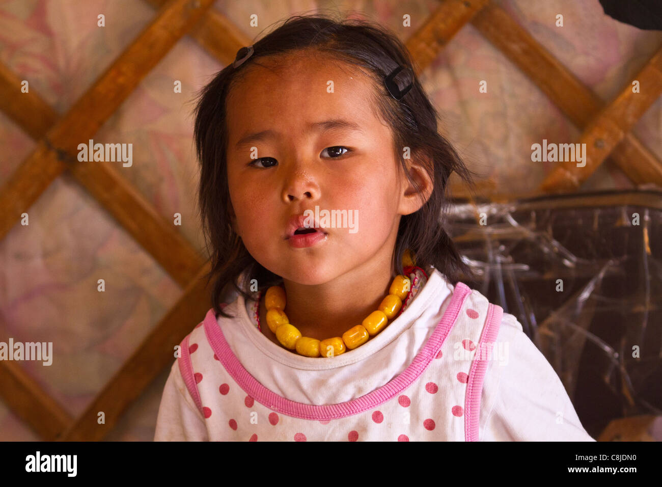 Young mongolian girl in the family ger in Mongolia. - Stock Image