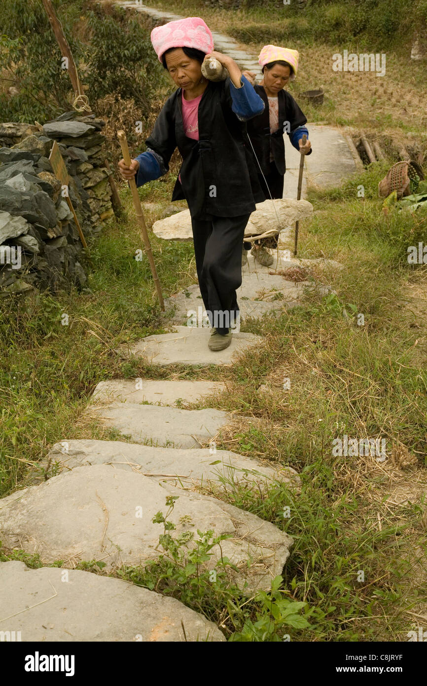 Carrying a heavy rock to a building site in a village in China Living in hills of China surrounded by rice fields. Stock Photo