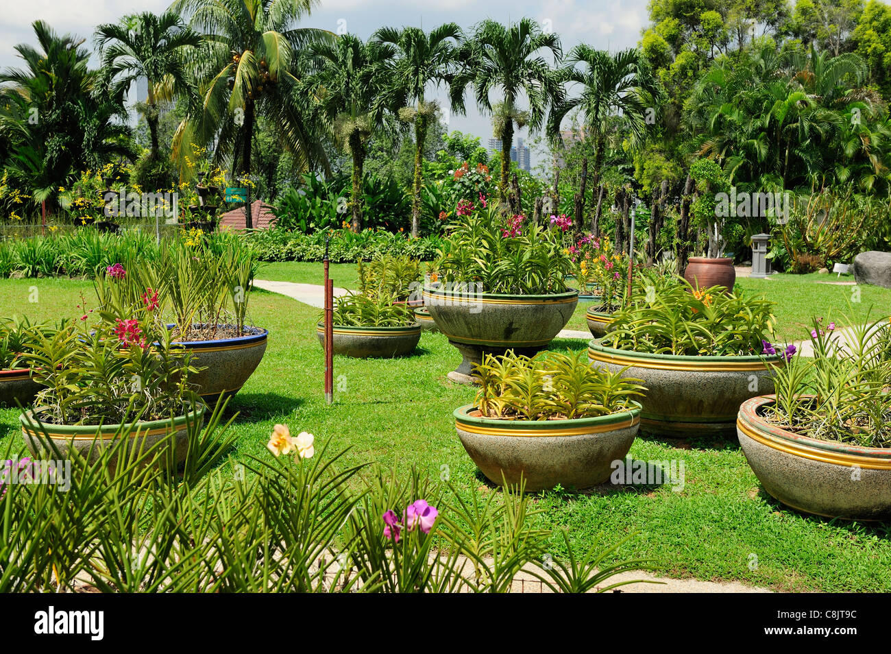Orchid Garden within the Lake Gardens (Taman Tasik Perdana), Kuala Lumpur, Malaysia - Stock Image