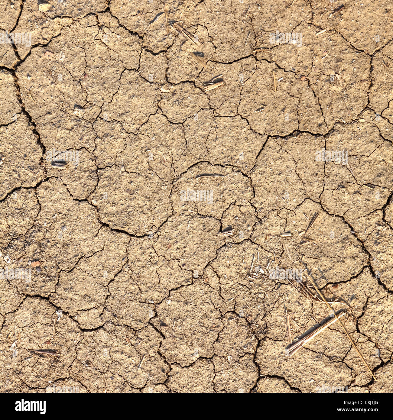the dry soil in Tuscany after a long summer without rain - Stock Image
