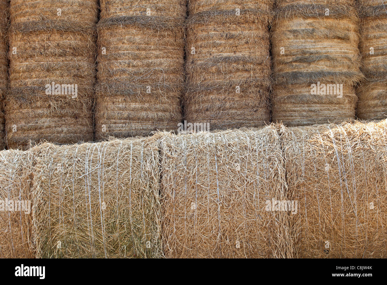 several bales of straw stacked and placed - Stock Image