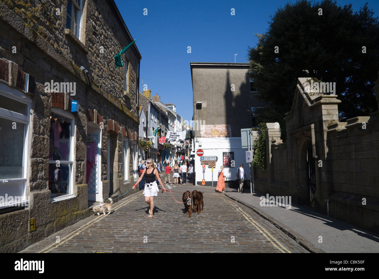 St Ives Cornwall England UK Woman walking three dogs on lead along cobbled Market Place in this busy Cornish seaside - Stock Image