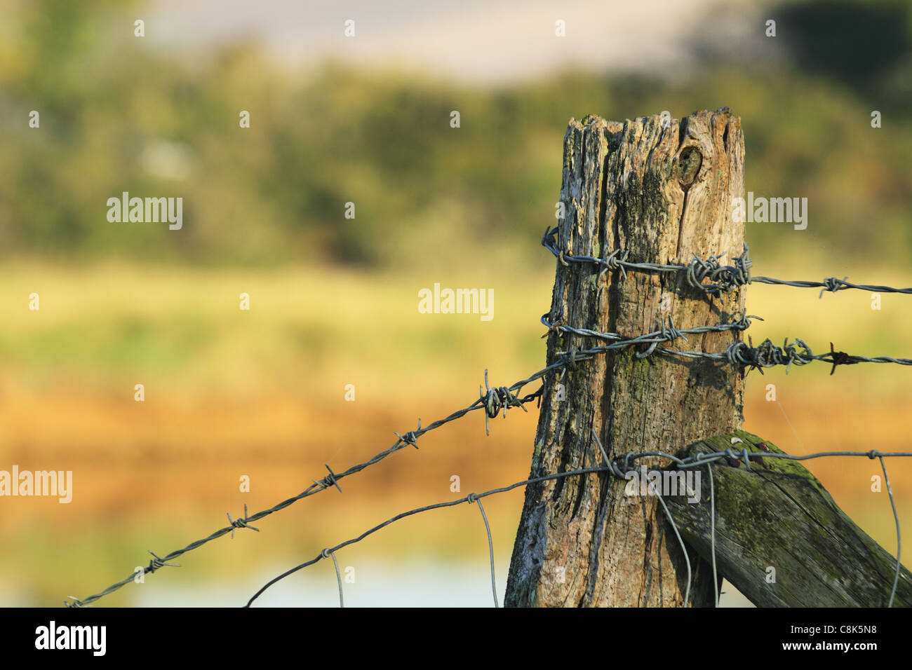 A straining post in a fence. - Stock Image