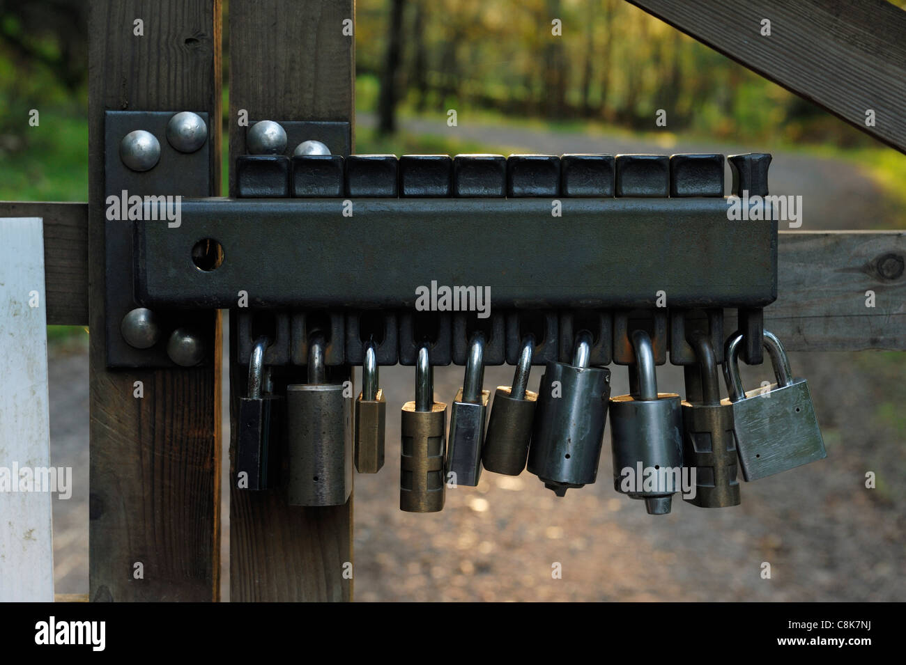 Group lockout padlock concept - Stock Image