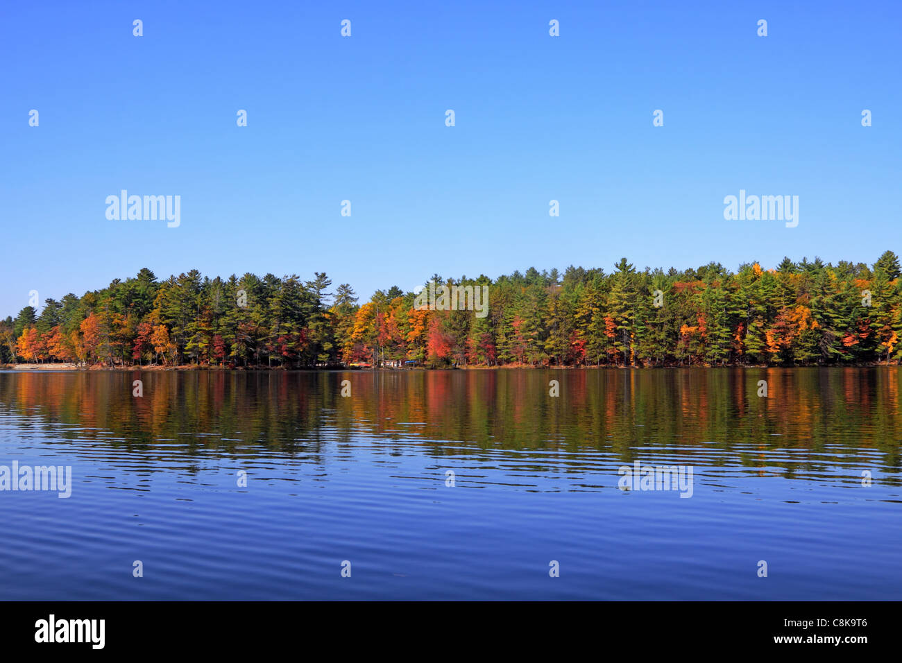 Beach along Lower Mazinaw Lake with canoe rental store in Bon Echo Provincial Park - Stock Image