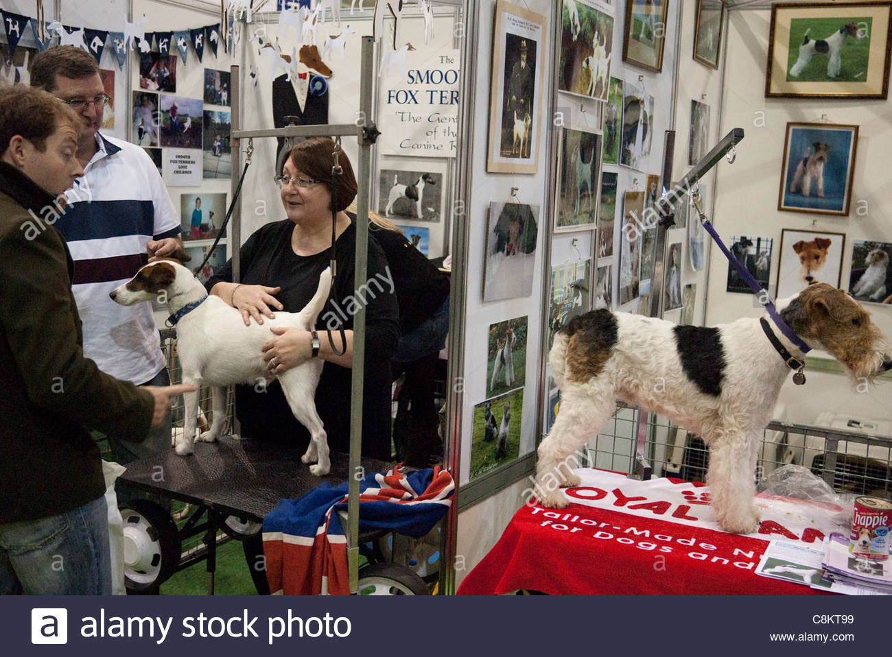 Discover Dogs dog show at Earls Court - Stock Image