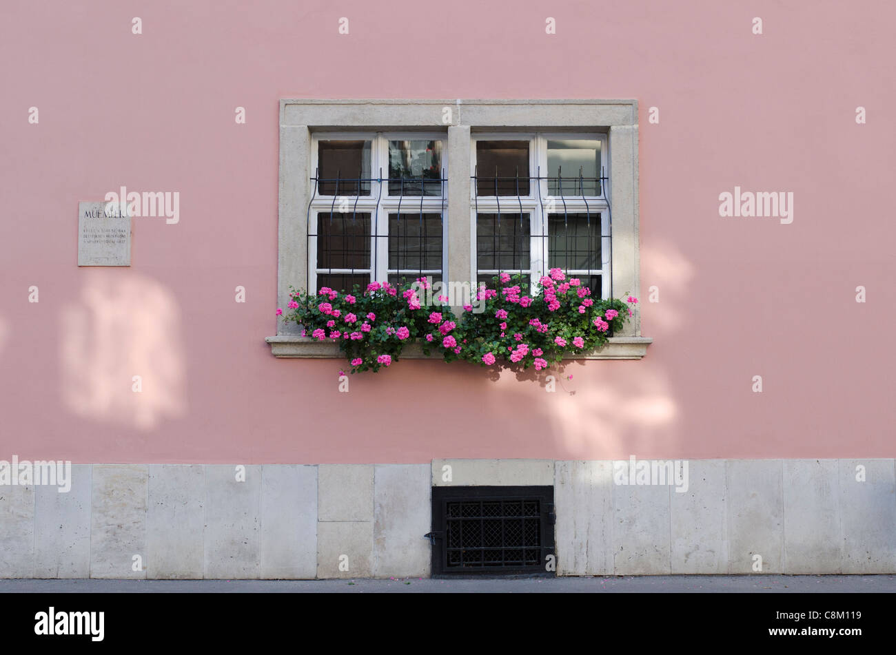 Window box in Vár-hegy, old Buda - Stock Image