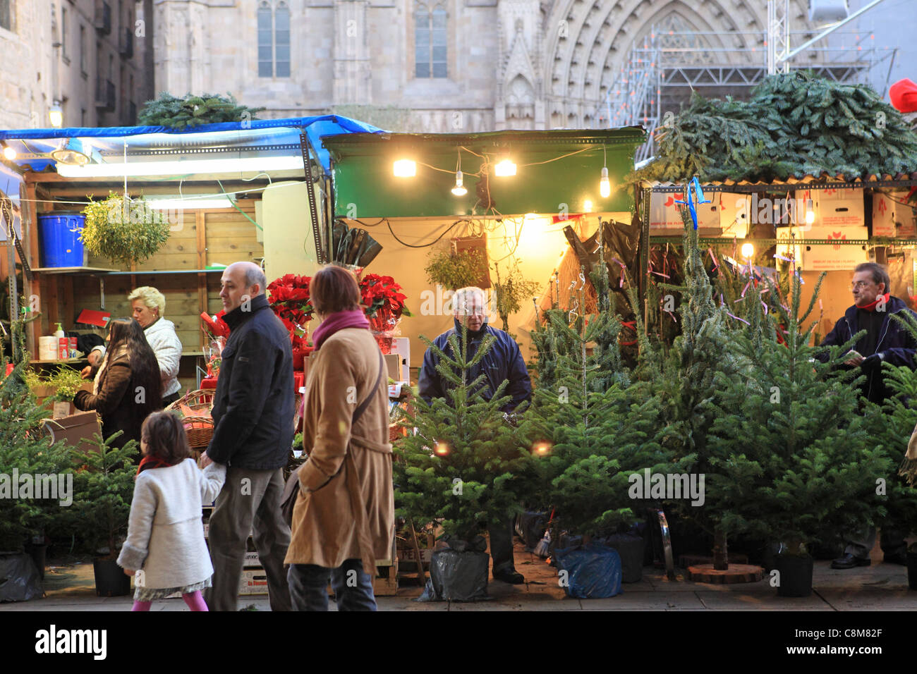 Family walking past Christmas trees for sale by the Cathedral, on the Fira de Santa Llucia in the Gothic Quarter, - Stock Image