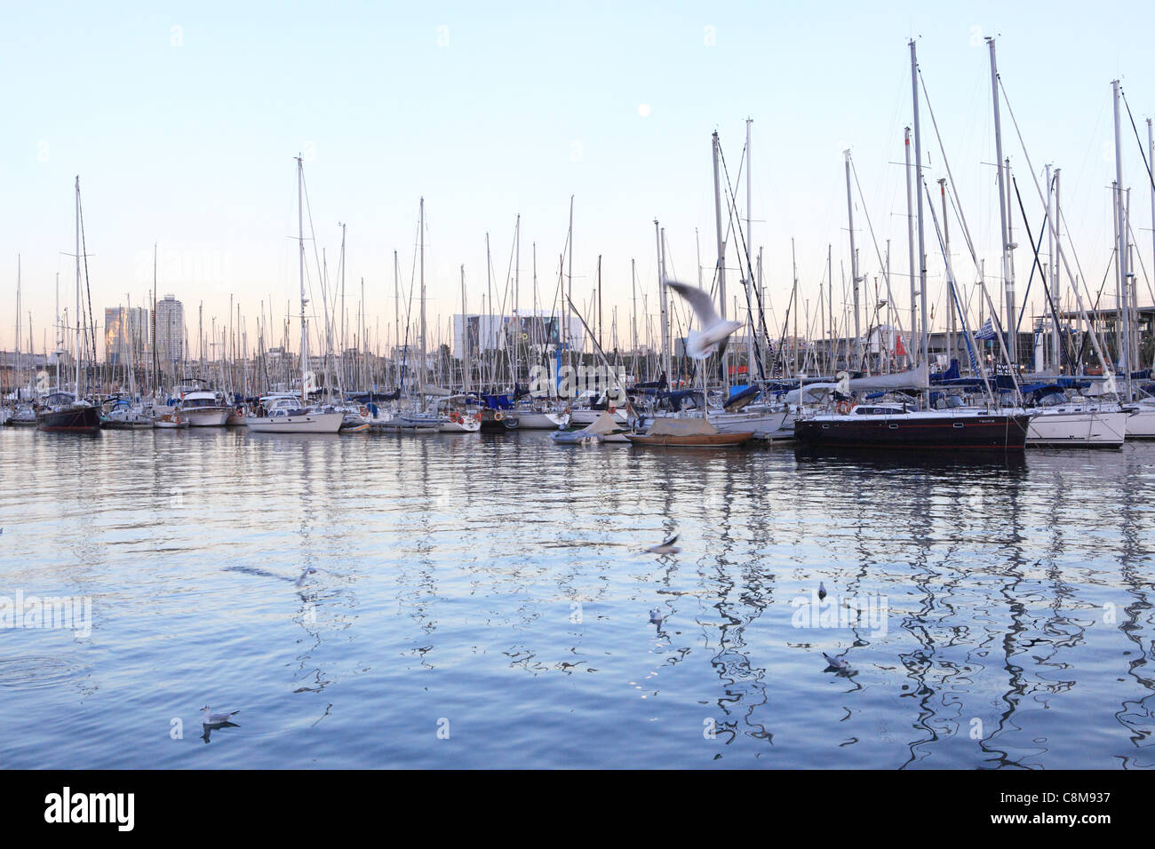 The Darsena del Commerc, the marina at Port Vell in Barcelona, Spain - Stock Image