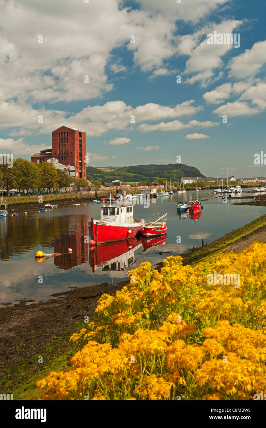 Dumbarton Distillery and boats on the River Leven - Stock Image