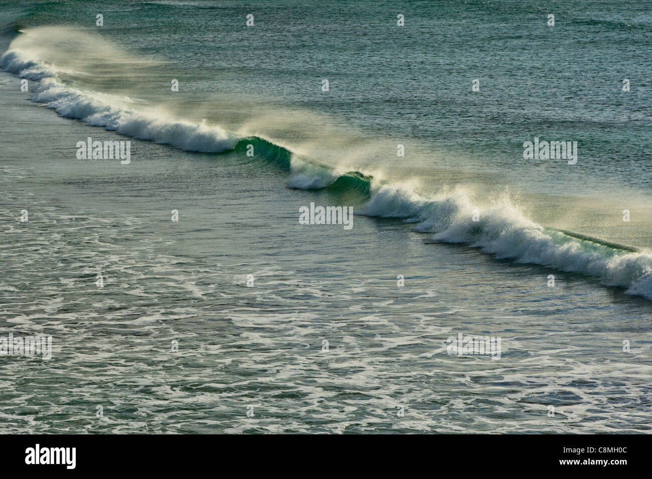 Breaking wave in strong winds at Quendale Bay, Mainland, Shetland, Scotland - Stock Image