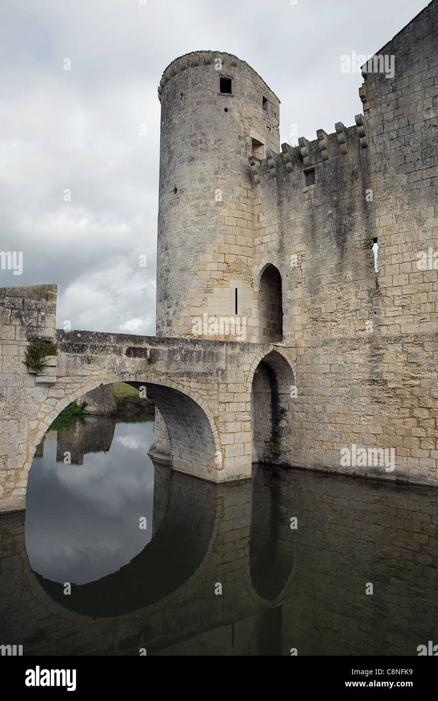 France, Charente-Maritime, St Jean d'Angle, medieval moated castle - Stock Image