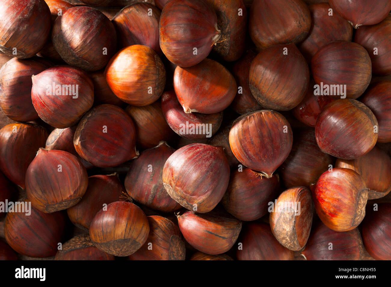 Many Chestnuts, Full Frame - Stock Image