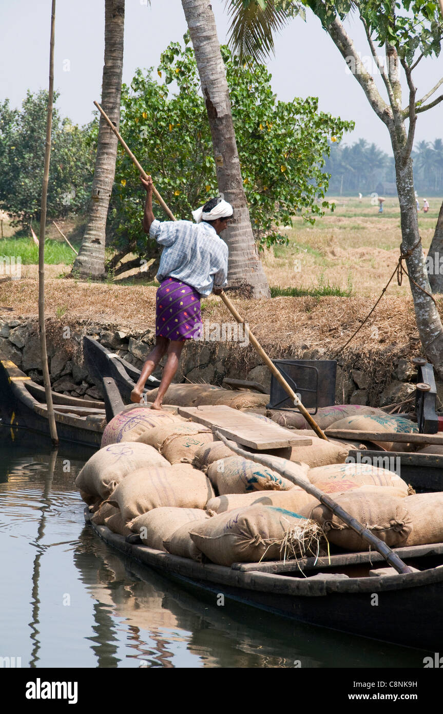 Man poling an 'original' rice boat with rice sacks collected from the paddy fields in the rice belt area of Kerala Stock Photo
