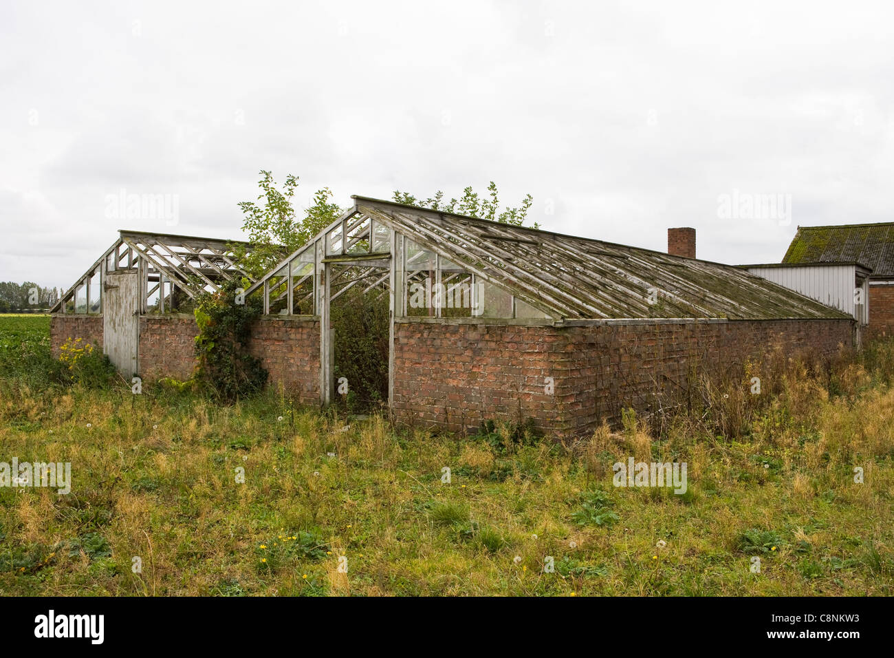 Redundant Greenhouse - Stock Image