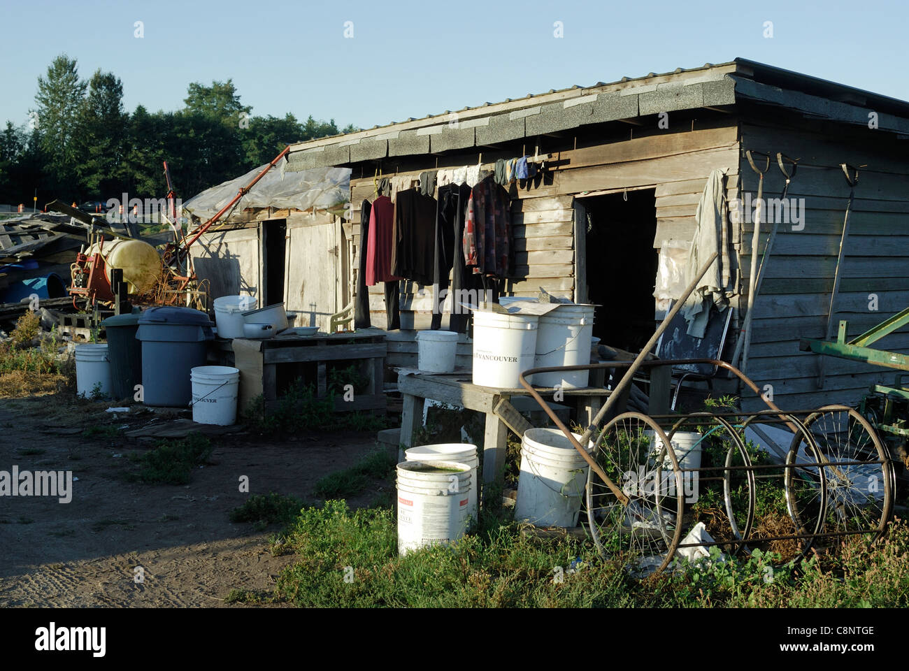 Old shack on a farm littered with equipment and pails, used for storage and to accommodate hired labour. - Stock Image