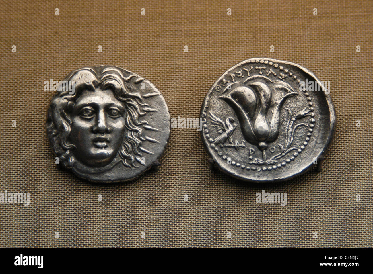 Ancient Greek coins from the numismatic collection of the