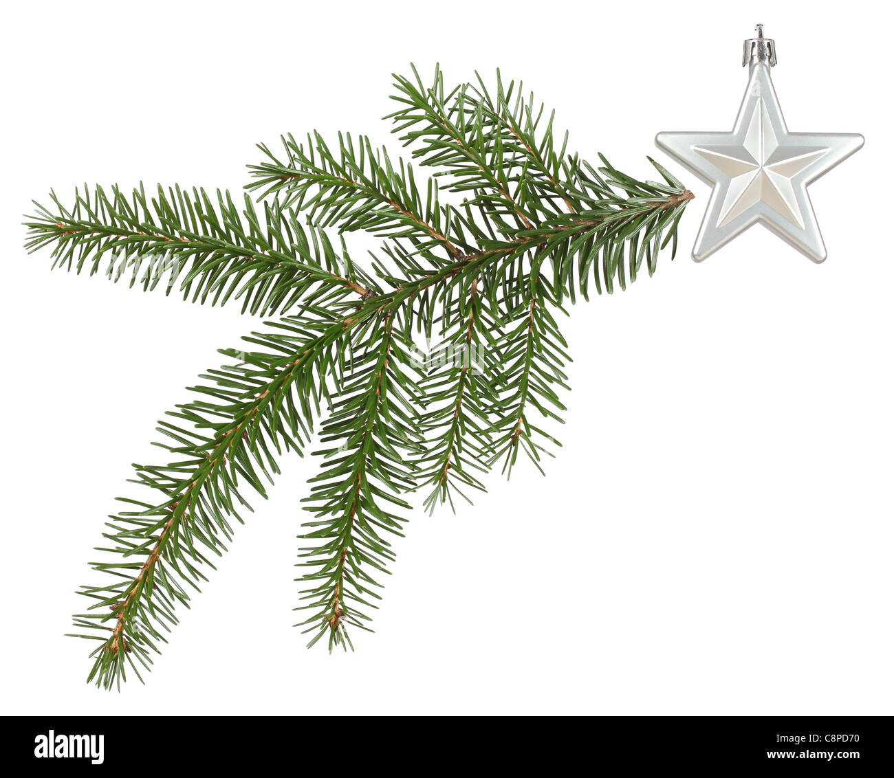 green twig and a silver star arrange as a Christmas comet - Stock Image