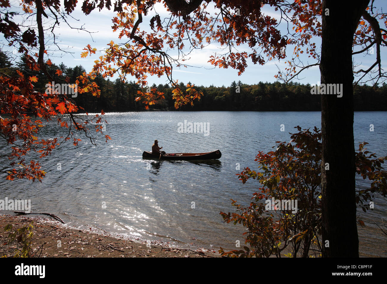 Man in a canoe on Walden Pond, Concord, Massachusetts - Stock Image