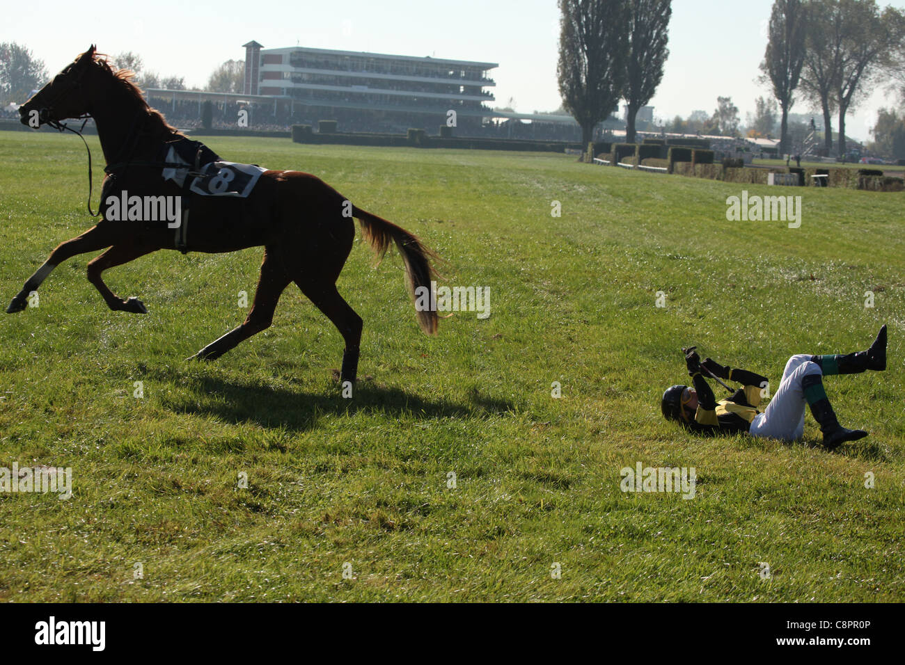 Famous annual steeplechase cross-country run Velka Pardubicka in Pardubice, Czech Republic on 10 October 2010. Stock Photo