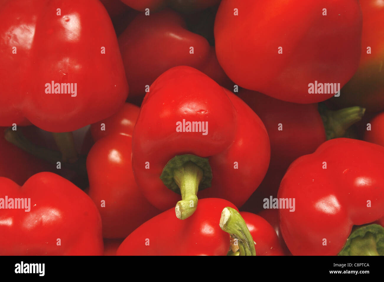 close up iamge of red bell peppers Capsicum annuum - Stock Image