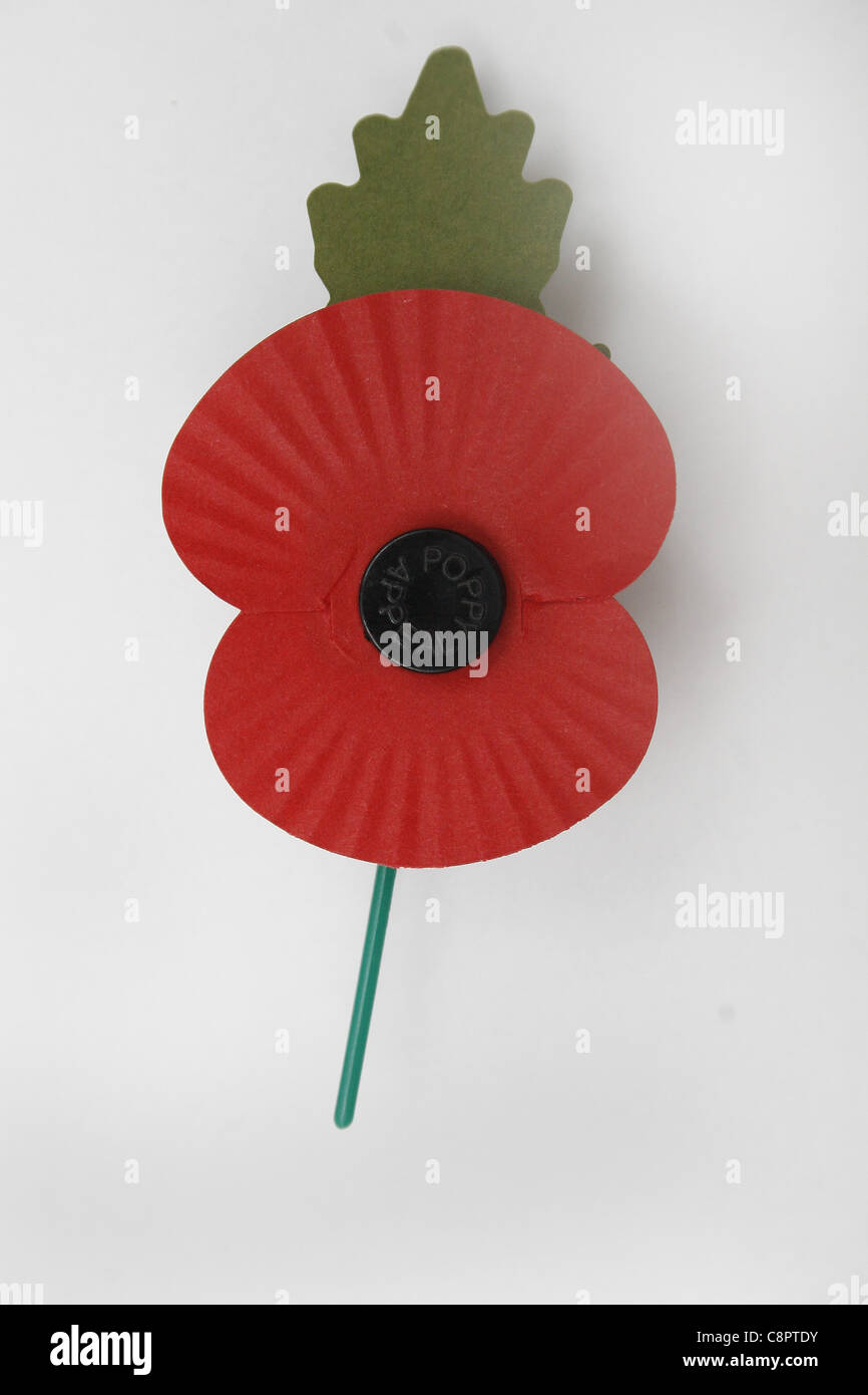 image of red poppy on white background, commemorating world war - Stock Image