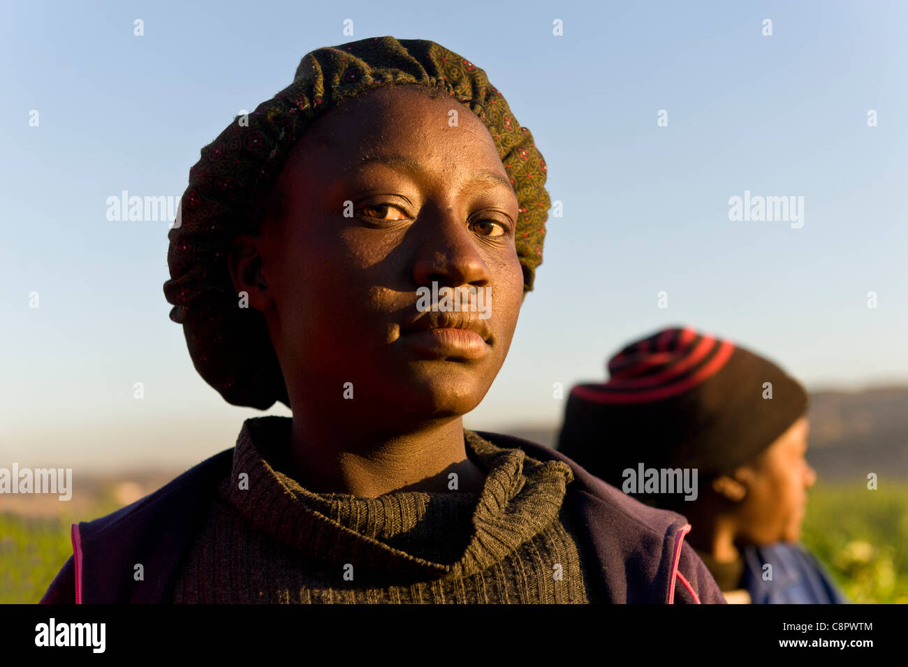 Field workers on a melon farm Noordoewer Namibia - Stock Image