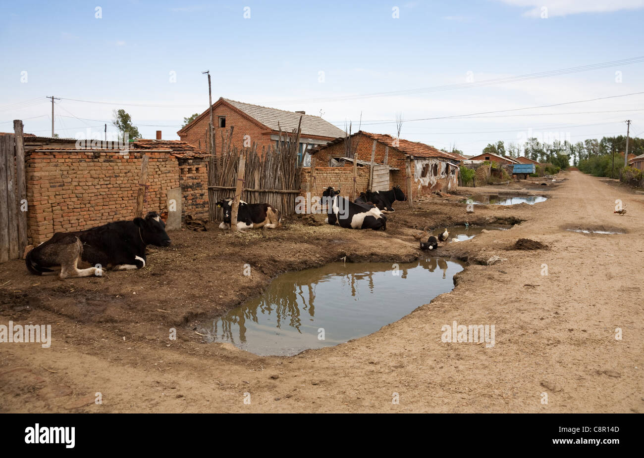 Poverty - poor housing in a village, north east of China. - Stock Image
