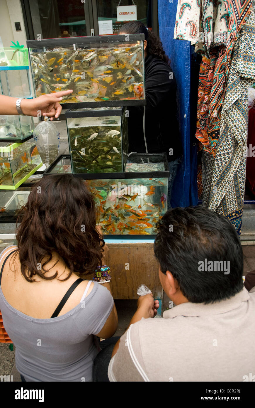 Fish tanks at mexican fare. - Stock Image