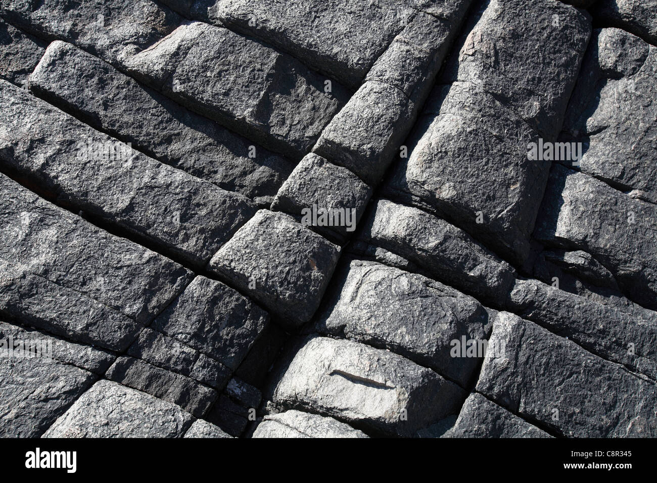 Basalt rock formation, Acadia National Park, Maine, USA - Stock Image