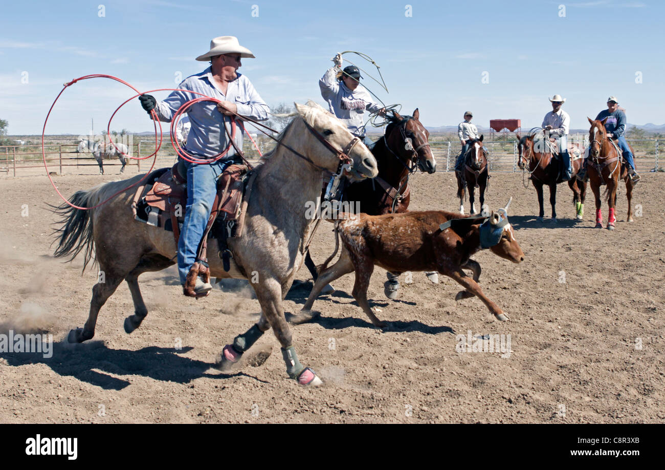 Family and friends team roping on a West Texas Ranch. Stock Photo