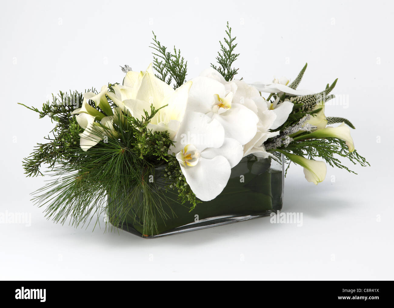 A close-up of a white bouquet of flowers in a vase. White calla lilies, white Veronica [Hebe], green juniper - Stock Image