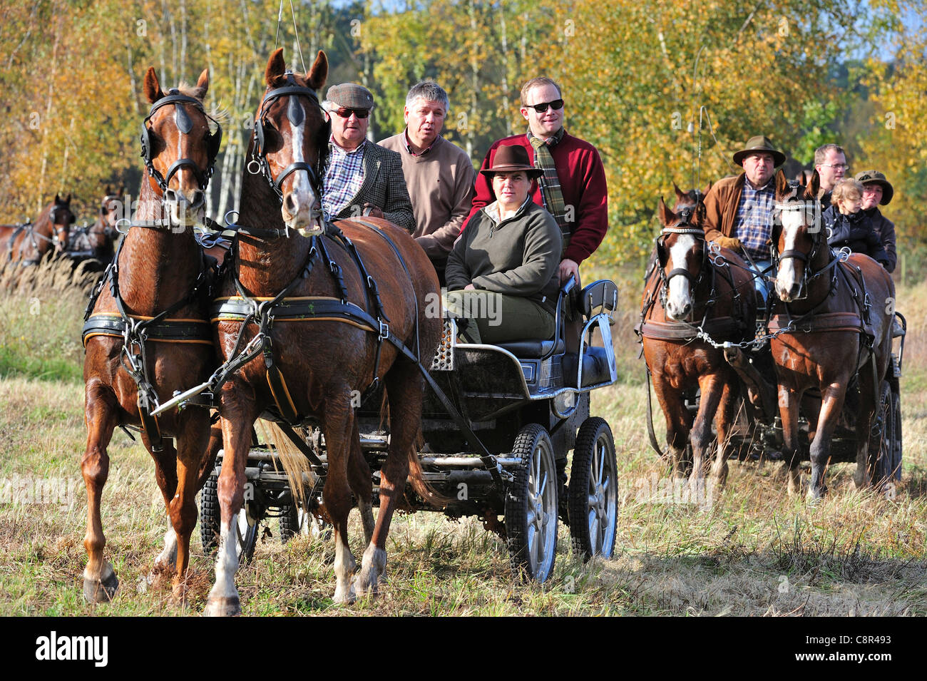 Hunting carriages during Saint Hubert / Saint Hubertus commemoration at drag hunting demonstration in autumn, Europe - Stock Image