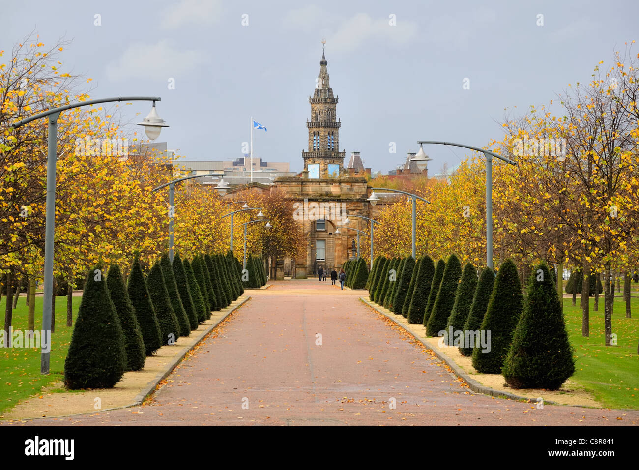 Avenue of small conifer trees line the walkway towards the McLennan Arch in Glasgow Green - Stock Image