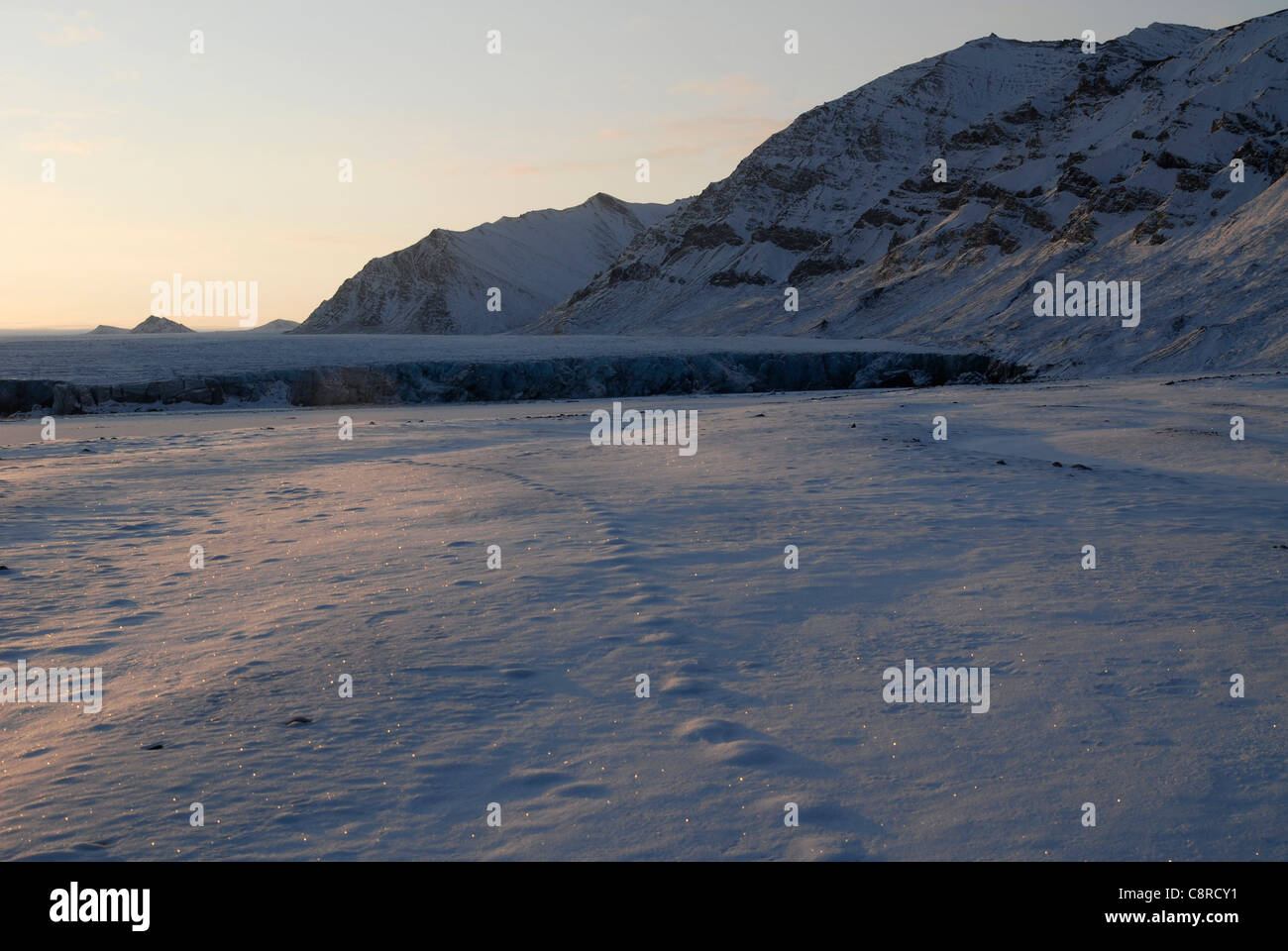 Traces of an animal in the snow in front of the glacier at sunrise, Recherchebreen, Spitsbergen - Stock Image