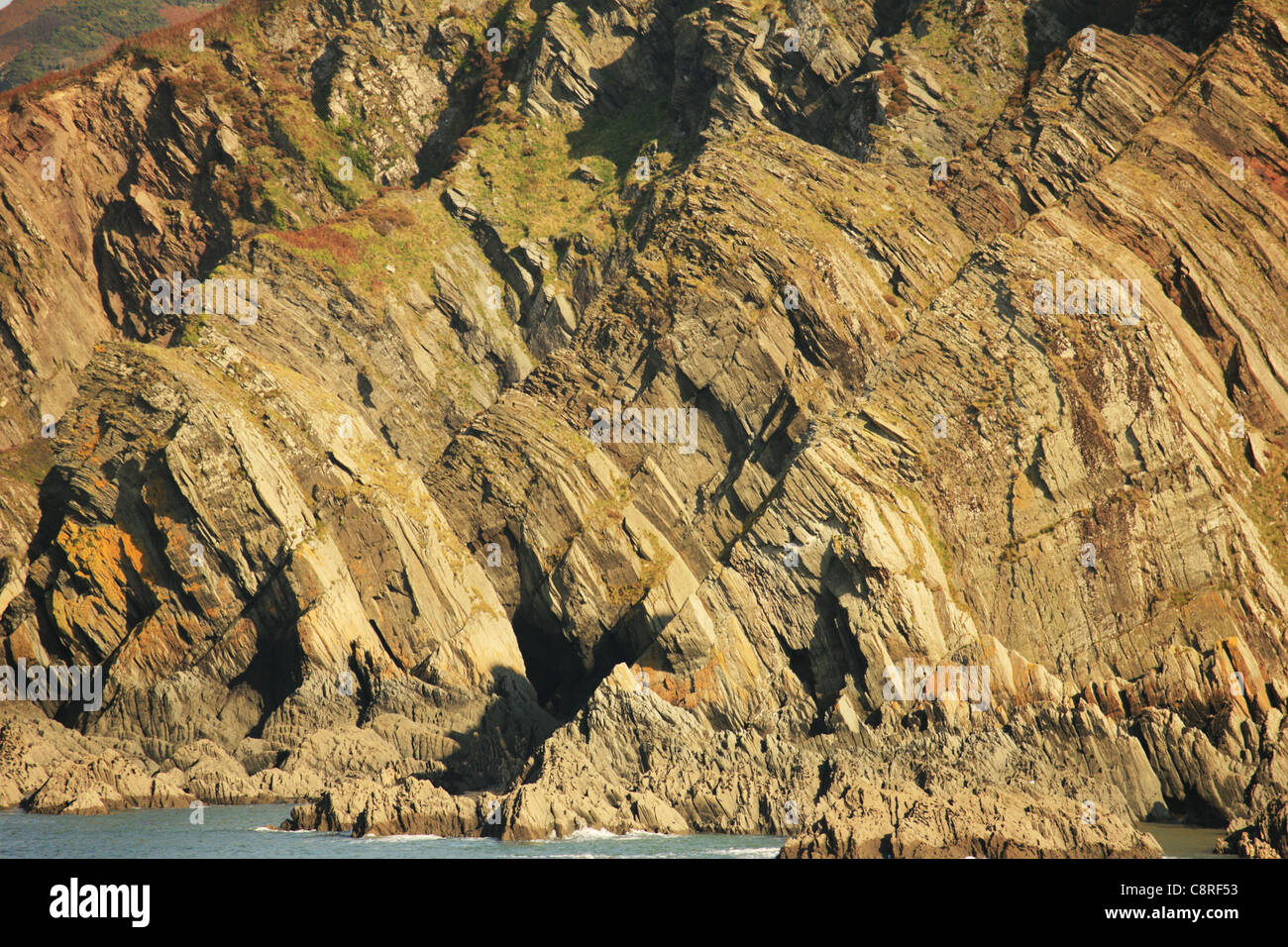 Folds in Morthoe Slate Beds; - Stock Image