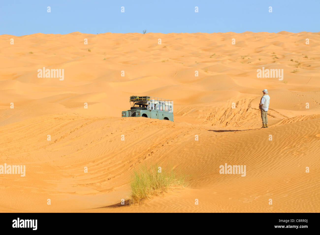 Africa, Tunisia, nr. Tembaine. Desert traveller overseeing a sandfield close to Tembaine on the eastern edge of - Stock Image