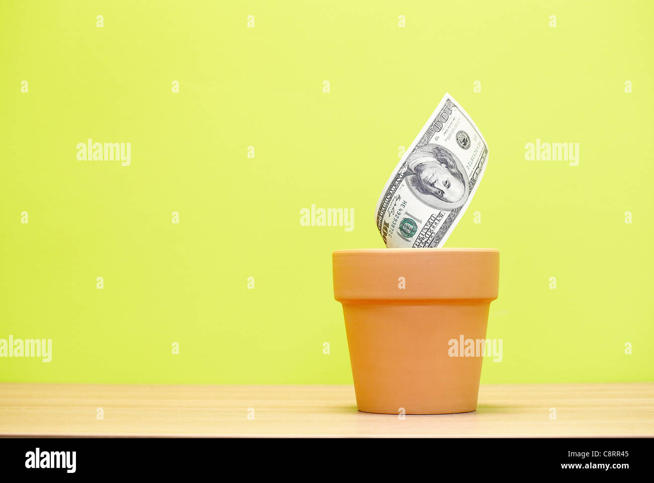One hundred dollar bill growing on flower pot - Stock Image