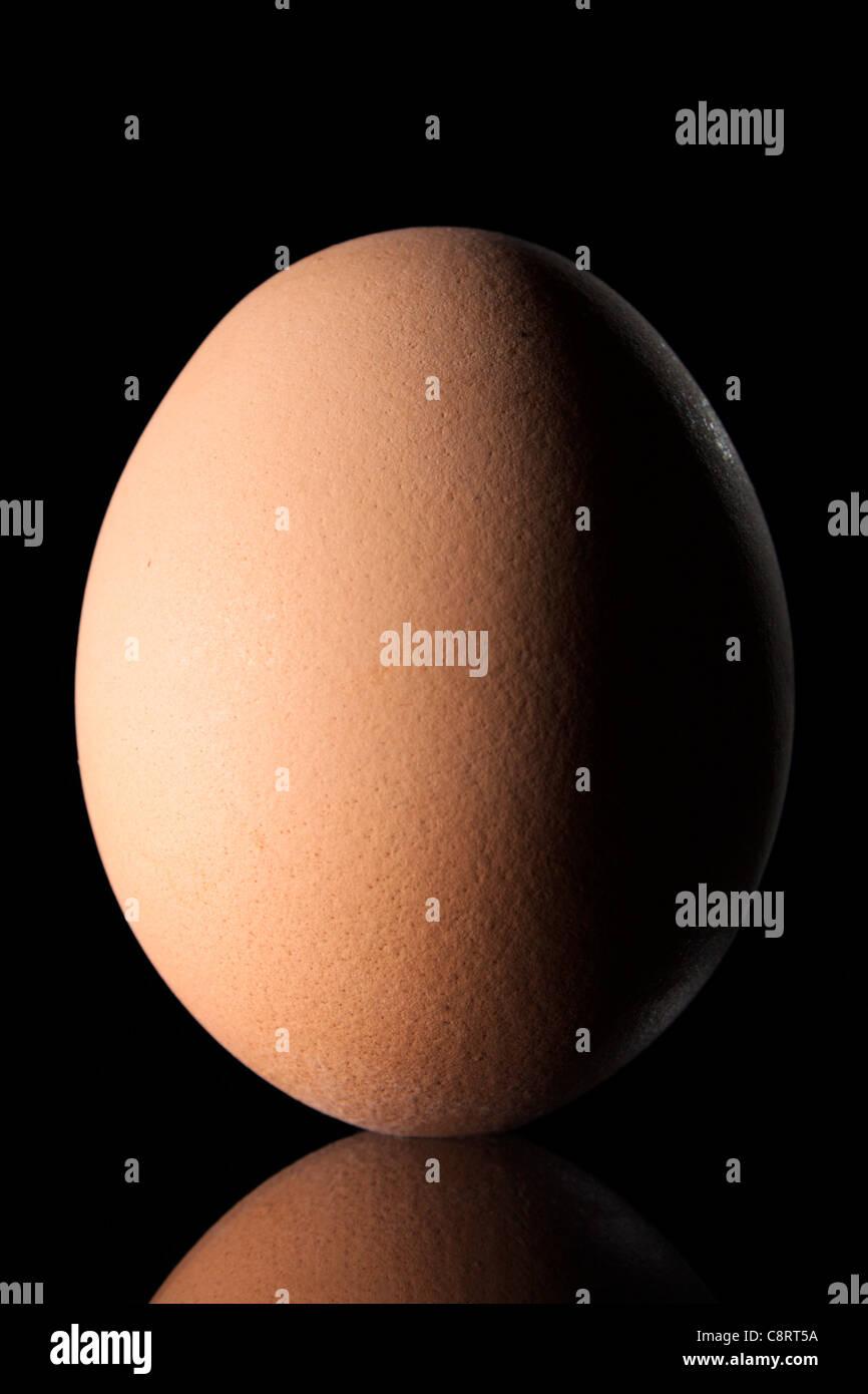 Egg on Black Background - Stock Image