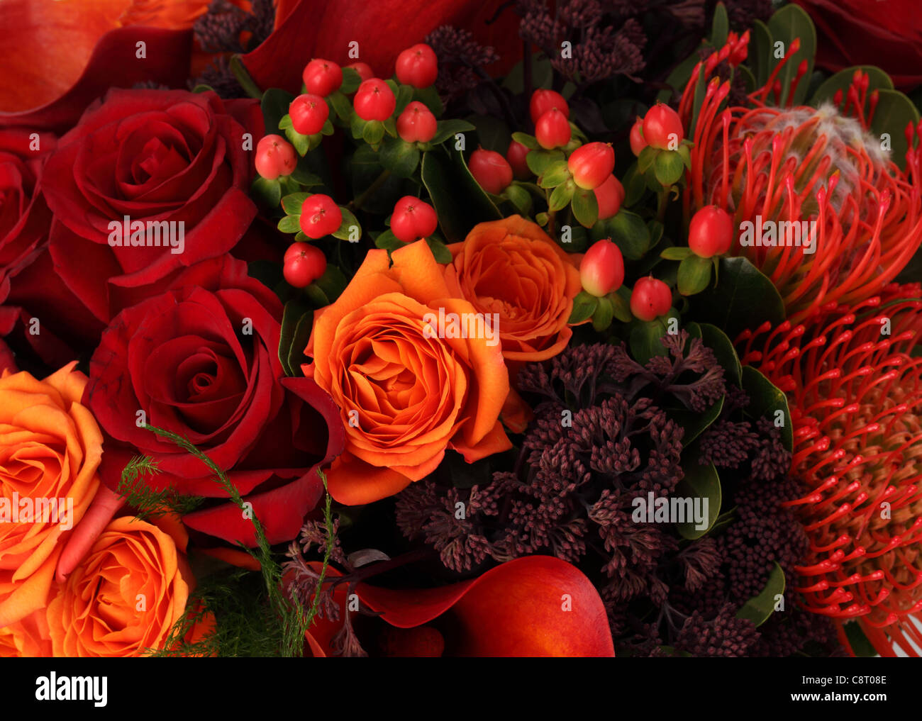 A close up of a colorful bouquet of flowers red orange roses red a close up of a colorful bouquet of flowers red orange roses red callas red proteas unknown purple sprays izmirmasajfo