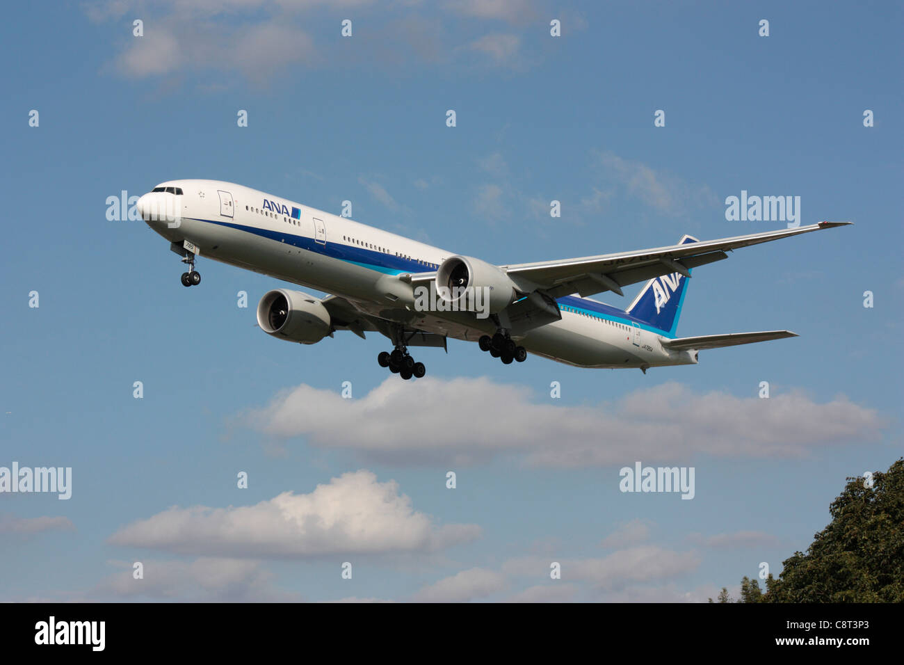 ANA Boeing 777-300ER long haul widebody passenger jet plane on approach to London Heathrow - Stock Image