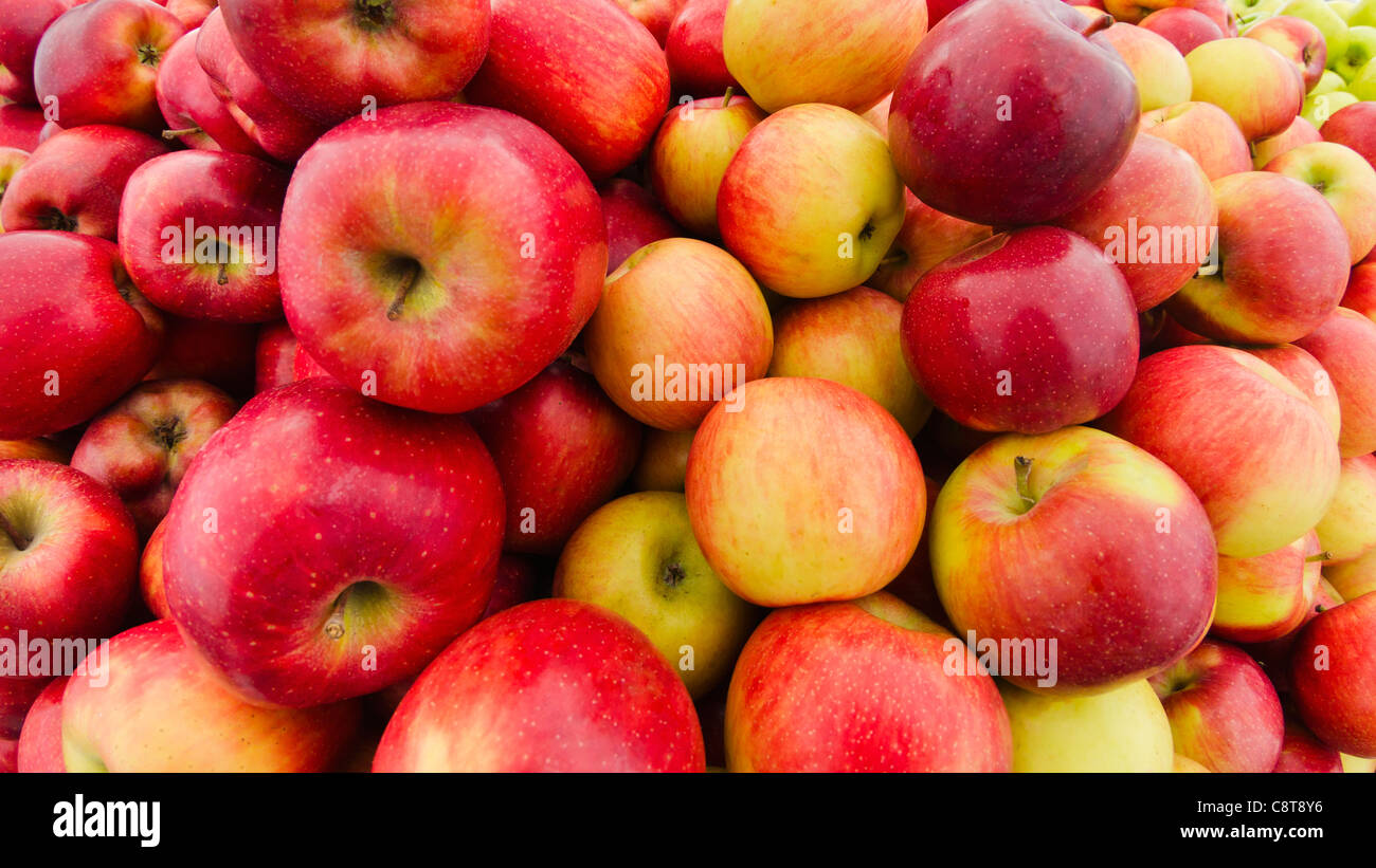 USA, New York City, Heap of apples - Stock Image
