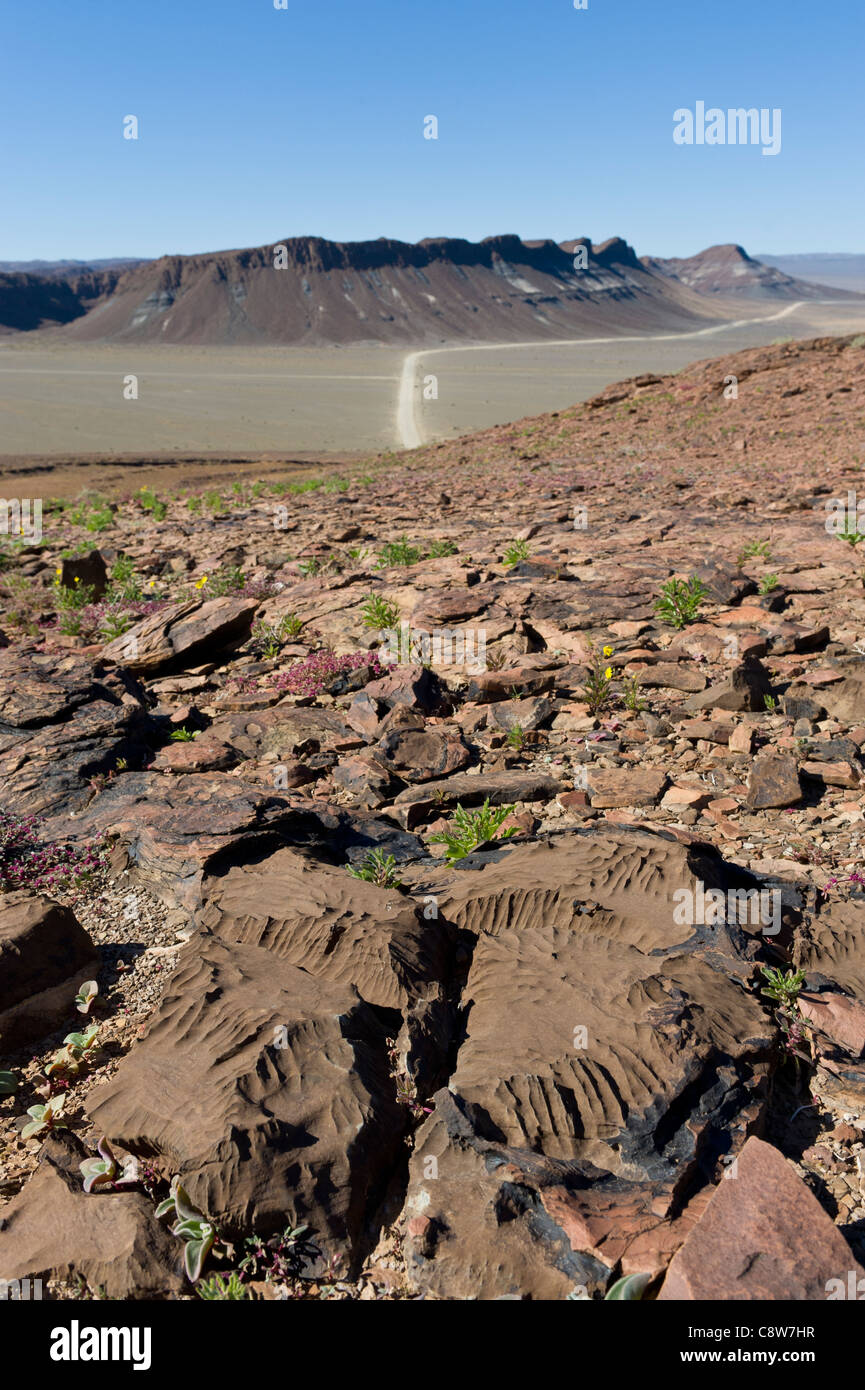 Rocky outcrop and desert road from a view piont west of Aussenkehr Namibia - Stock Image