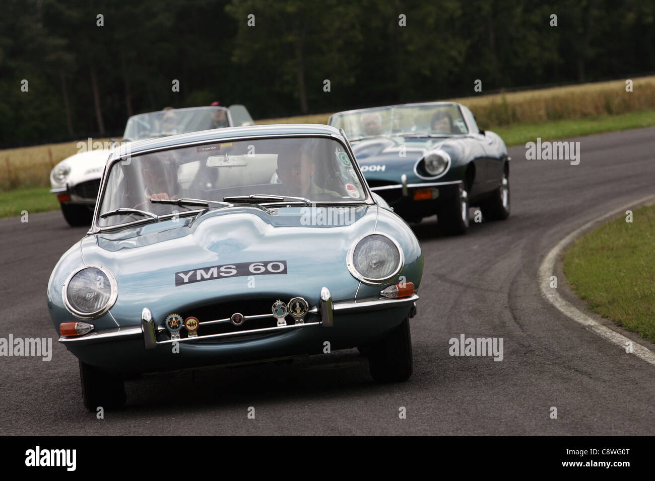 E type jaguars at Croft Motor Racing Circuit, North Yorkshire. - Stock Image