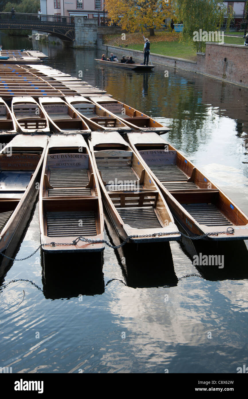 Punts lined up ready for hire at Scudamores boatyard Quayside Cambridge England UK - Stock Image