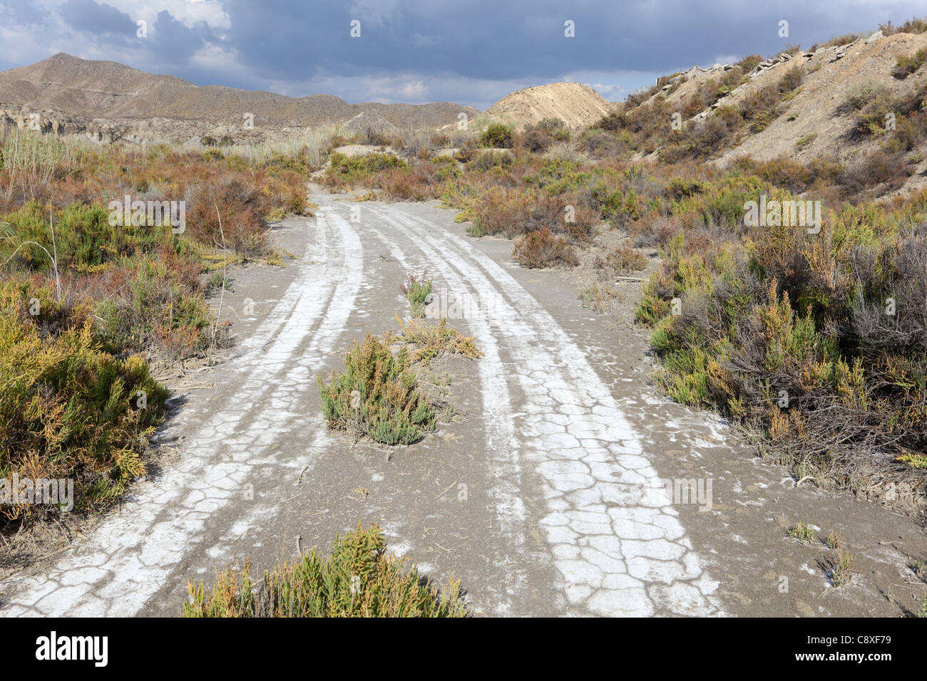 Lonely road in the desert. Andalusia, Spain - Stock Image