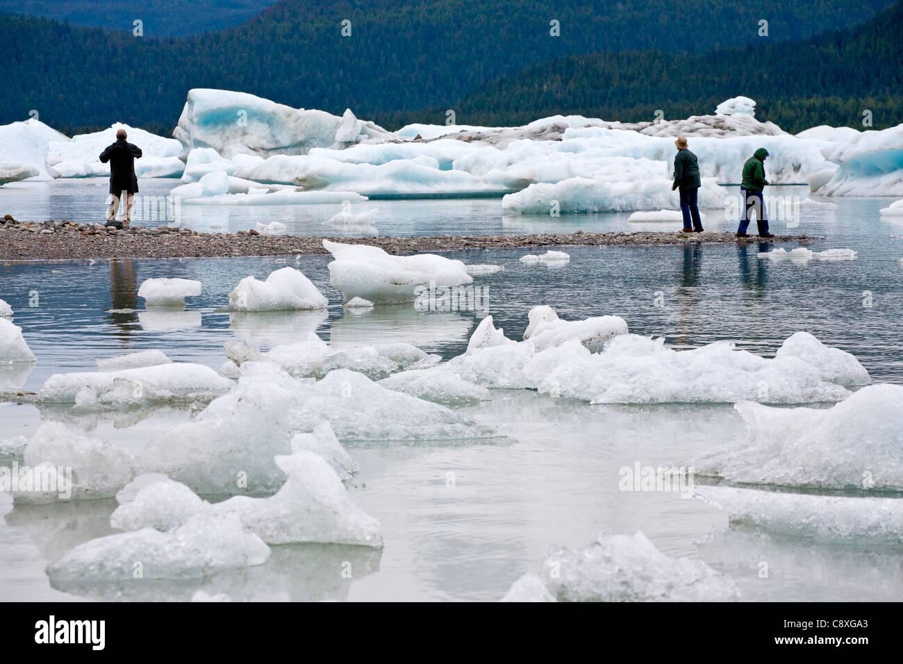 People and icebergs. Mendenhall Glacier lake. Juneau. Alaska. USA - Stock Image