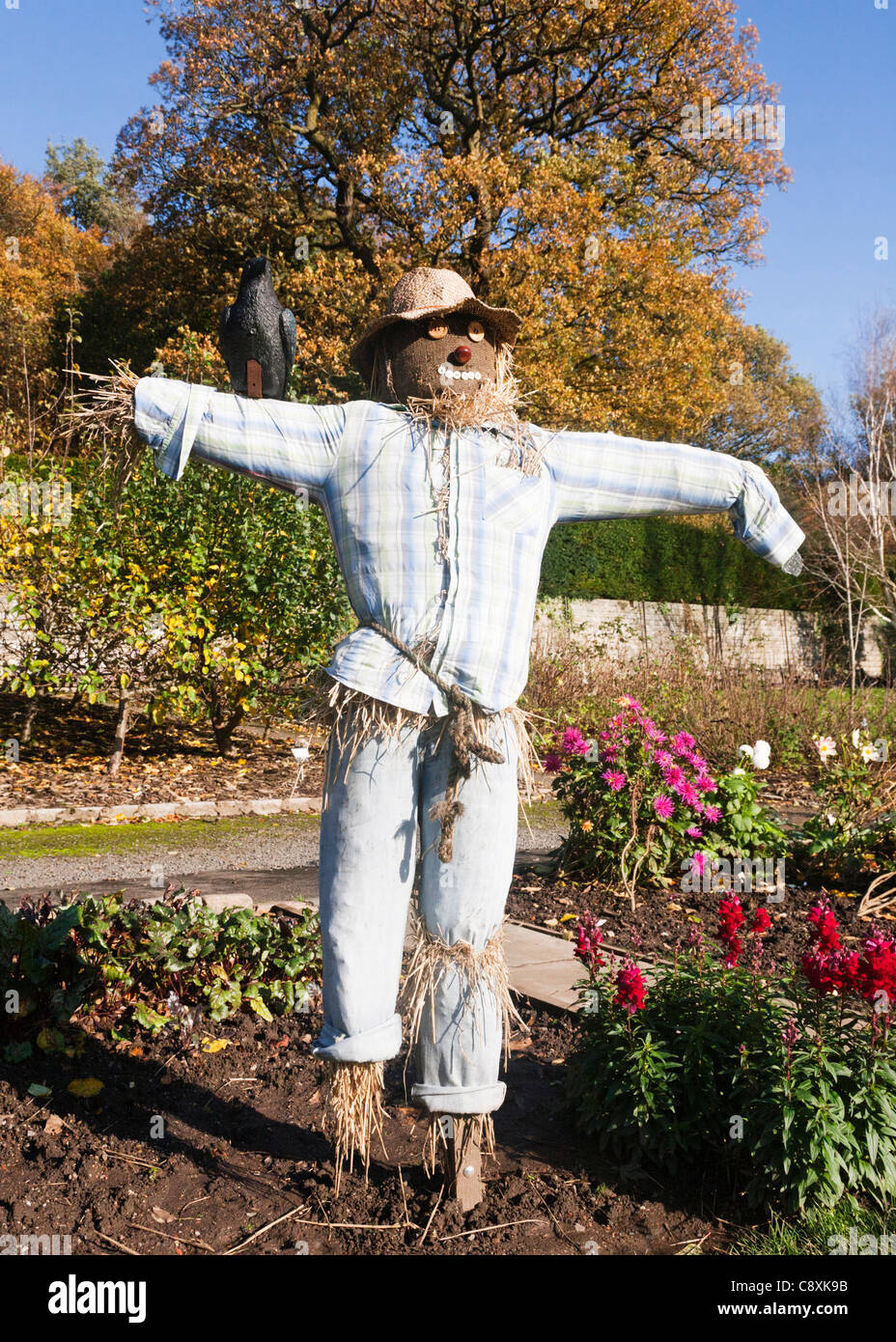 A straw stuffed scarecrow placed as a feature in a garden, Autumn, Britain. - Stock Image