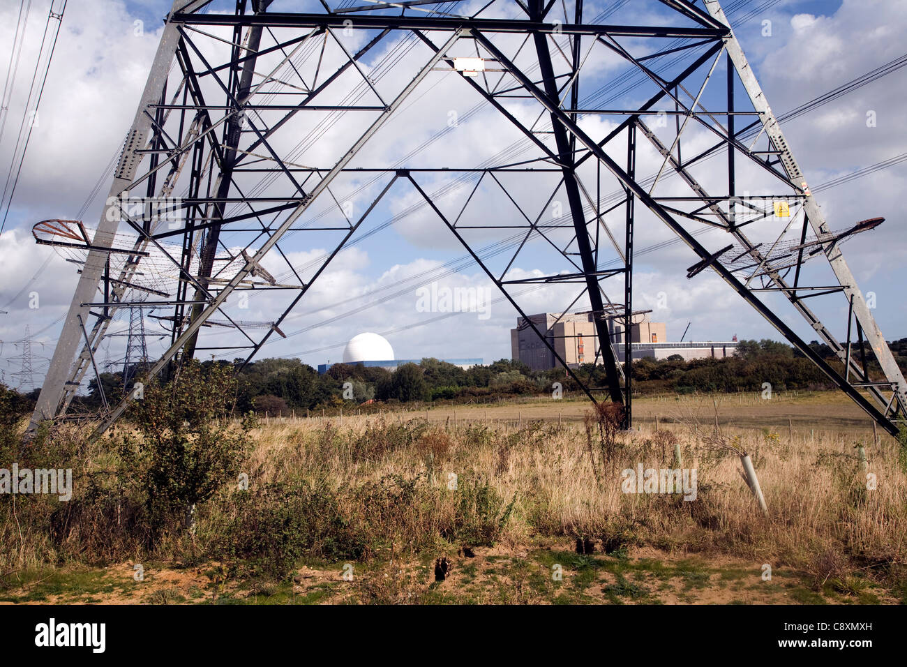 Electricity power lines running from the nuclear power station, Sizewell, Suffolk, England - Stock Image