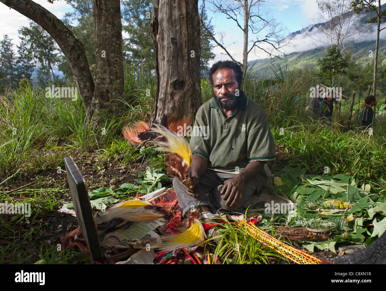 Man unpacking bird of paradise plumes to build head dress at a Sing-sing Western Highlands Papua New Guinea - Stock Image